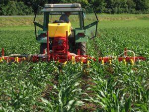 Cultuureg RH600M1, rolschoffel in combinatie met APV zaaimachine in maïs voor onder vrucht(Prijslijst blz 84/85)